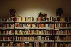 Avatar Bibliotaroni Taroni